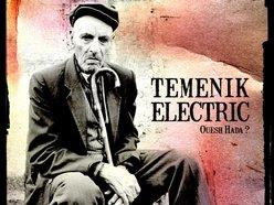 Image for Temenik Electric