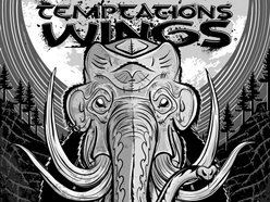 Image for Temptations Wings