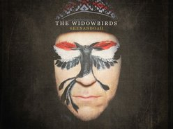 Image for Simon Meli & The Widowbirds