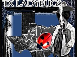 Image for TX Ladybugs