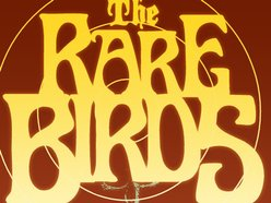 Image for The Rare Birds