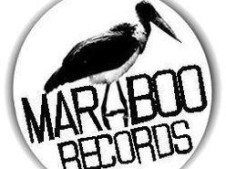 Image for Studio Maraboo