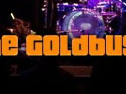 Image for The Goldbugs