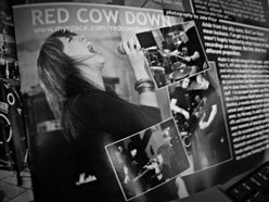 Red Cow Down
