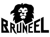 Bruneel