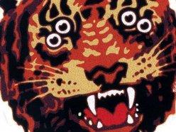 Image for Tigress