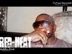 Image for Malibu Heat (TTR™ / AAO™)