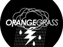 Orangegrass 橙草