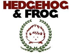 Image for Hedgehog & Frog