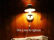 We Live In Igloos