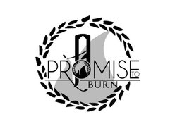 Image for A Promise to Burn