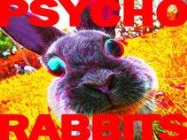 ThePsychoRabbits