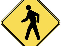Image for The Pedestrians