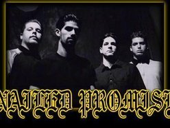 Image for Nailed Promise
