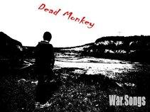Dead Monkey