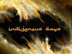Image for Indigenous Ways