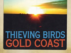 Image for Thieving Birds