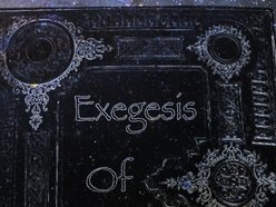 Image for Exegesis of Chaos