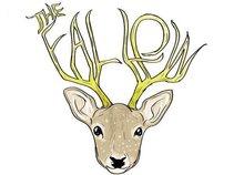 the fallow
