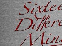 Sixteen Different Minds