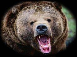 ab896f63730 Big Bear Sound
