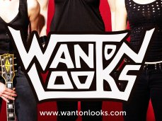 Image for THE WANTON LOOKS