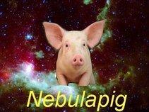 Nebulapig