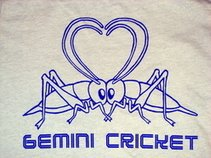 Gemini Cricket