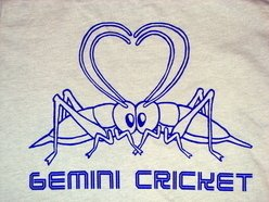 Image for Gemini Cricket
