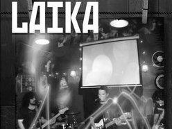 Image for Laika