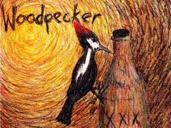 Image for Woodpecker