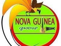 NOVA GUINEA GROUP