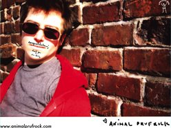 Image for Animal Prufrock