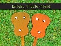 bright little field