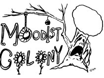Moodist Colony