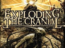 Exploding The Cranial