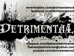 Image for Detrimental