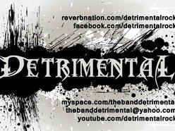 Image for Detrimental