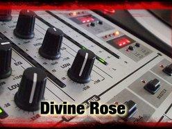 Divine Rose