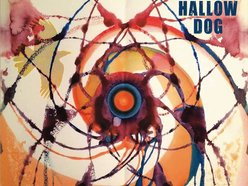 Image for Hallow Dog