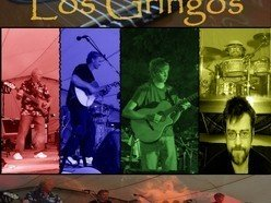 Image for Los Gringos