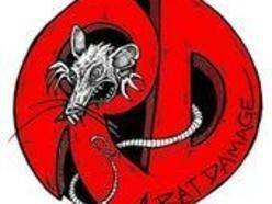 Image for RAT DAMAGE