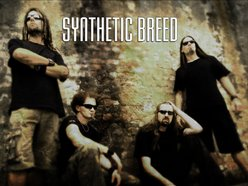 Image for Synthetic Breed