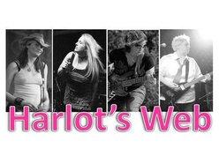 Image for Harlot's Web