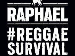 Image for RAPHAEL