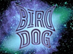 Image for Bird Dog