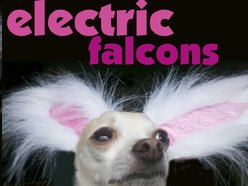 Image for Electric Falcons