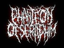Phanteon Of Seraphim