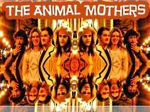 The Animal Mothers