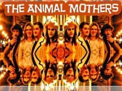 Image for The Animal Mothers